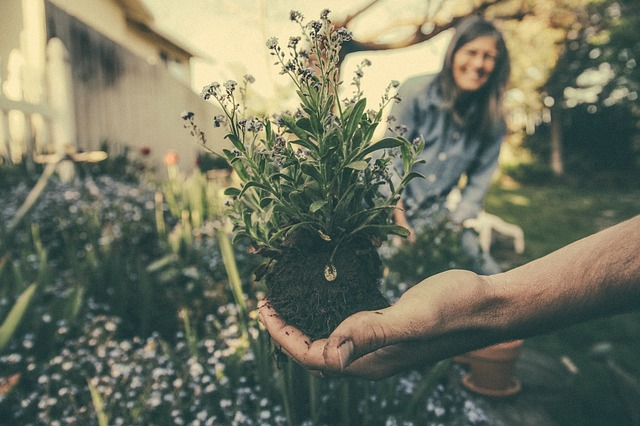 5 Reasons to Pick up Gardening During the Weekends